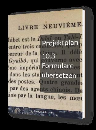 PP_10_3_Formulare_übersetzen