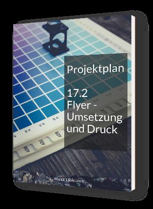 PP_17_2_Flyer_Umsetzung_Druck